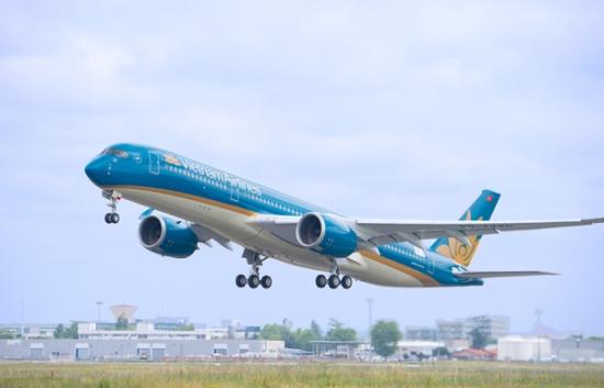 Ngày Tết hành khách có được mang cành đào, mai lên máy bay không? Có được mang cành đào, mai lên máy bay không?
