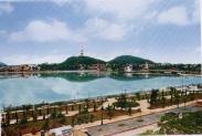 Đại lý vé máy bay tại Huyện Kiến Thụy Đại lý vé máy bay tại Huyện Kiến Thụy